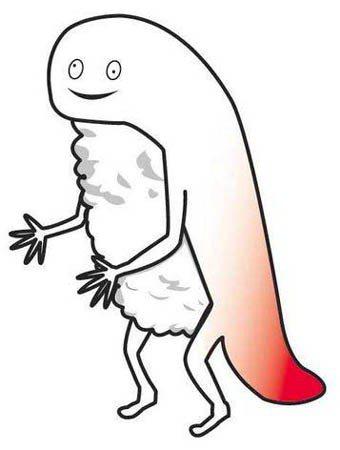 北海道的吉祥物都走這種路線嗎? 圖片來源/ sappoko.