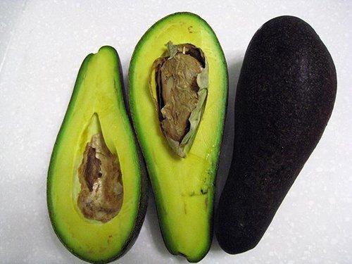 完熟的酪梨營養價值高,老人、小孩都適合食用。 圖片來源╱台灣好食材 Foodin...