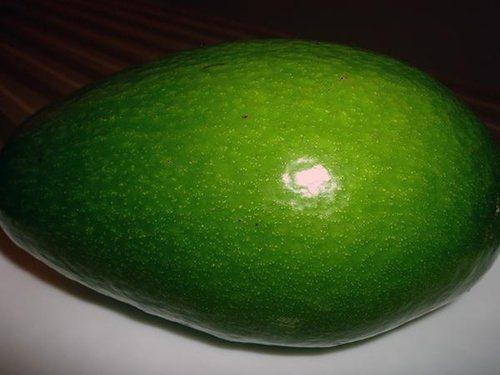 酪梨未熟成前,果皮呈青綠色,必須放5~10天才能吃。 圖片來源╱台灣好食材 Fo...