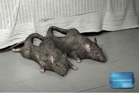 看起來就很不舒服的老鼠鞋。 圖片來源/ toxe