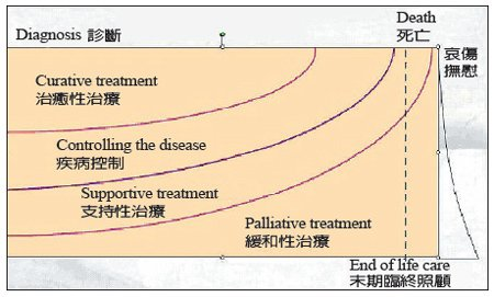 醫療種類的分類概念。製表/趙可式,2007