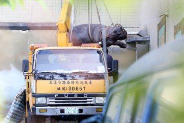 解決觀光休閒農場中動物展示的問題不能只靠震怒