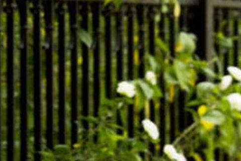 2014年中國大陸女星身價中,周迅被爆片酬為1500萬元(約新台幣7500萬元),粗略估計,周迅僅靠電影《竊聽風雲3》、《撒嬌女人最好命》和《我的早更女友》,加上電視劇《紅高粱》的片酬,一年就進帳7...