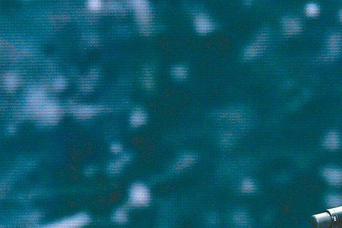 王力宏去年喜迎愛女、晉升人父後,「增產報國」願望依舊常在他心。前晚他在「華鼎獎」奪全球最佳流行歌唱演員獎,在後台與合作電影「黑帽駭客」的「雷神」克里斯漢斯沃相見歡,兩人大聊爸爸經,見克里斯漢斯沃有1...
