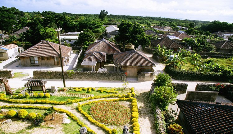 植物性食物在沖繩代表番薯、米飯、蔬菜;在羅馬琳達市,則是蔬菜、豆類、水果;在薩丁...
