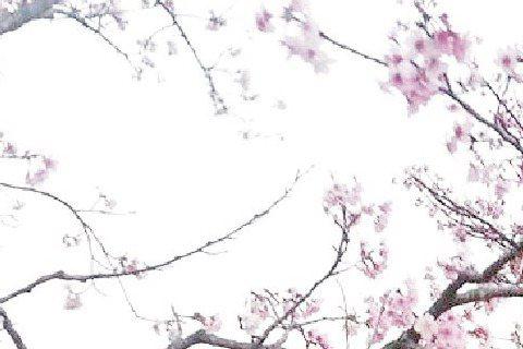 男星也有美麗農夫夢,王中平悄悄在新竹寶山湖邊買地,一手打造出農舍,但老婆余皓然卻沒想跟隨的意思;許效舜則在台東也買了農地,一心在退休後,告老歸田享受寂靜當個農夫。許效舜說:「我預計5年後和師父澎恰恰...