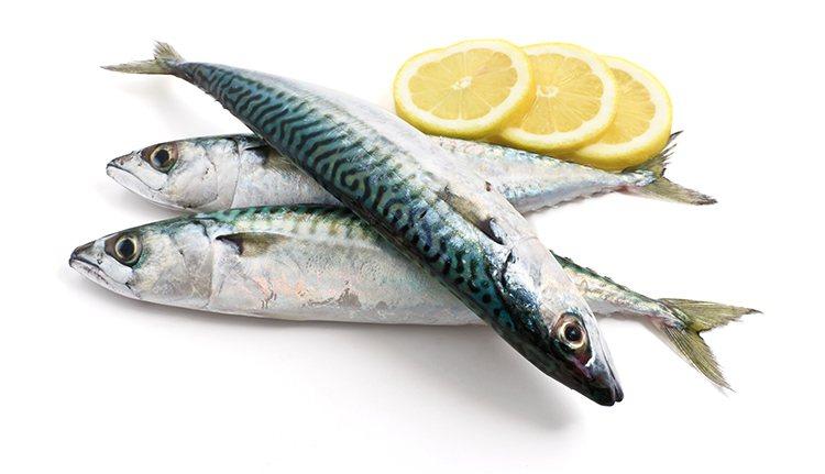 如何買魚?「魚鰓紅」代表新鮮? 圖/ingimage