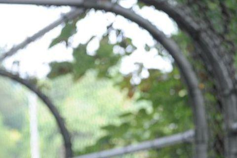 前湯嫂凱蒂荷姆絲最近在電影「甜心殺手」中轉變形象,改以女殺手出現,改頭換面的新嘗試也贏得許多讚賞。不過她說,會接演該片最主要原因是為了寶貝女兒蘇蕊。「甜心殺手」中,凱蒂荷姆絲飾演一位小學老師,溫柔善...