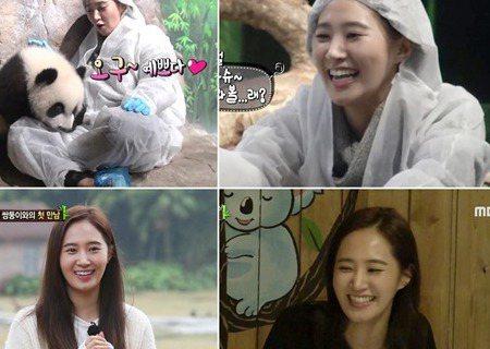 於1日播出的韓國綜藝節目《Animals》中,少女時代成員Yuri和大熊貓三胞胎一起度過了愉快的時光。節目中,Yuri和熊貓三胞胎首次見面就喜歡上了它們,禁不住連聲說「好漂亮」、「好可愛」,為了逗三...