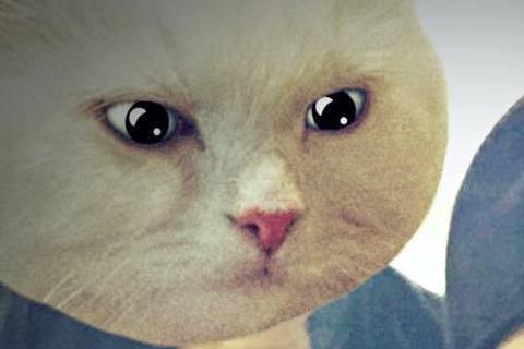 楊祐寧與郭采潔這對情侶,每次放在網路上的合照,總會有一方的臉被貓頭遮住,今年的大年初一開好是郭采潔29歲的生日,楊祐寧當然要送上生日注賀,他在臉書上寫下「大年初一,所有人陪妳長一歲!Happy Bi...