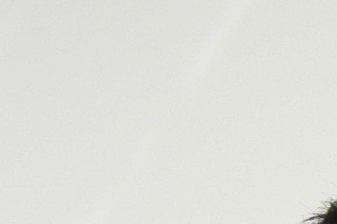 余祥銓老被網友譏是靠爸族,工作也總是換來換去,最近他改去購物台當購物專家,賣起壯陽保健食品業績可是嚇嚇叫,現在他月入60K可是相當滿意。據壹週刊報導,余祥銓不想再當靠爸族,最近改到購物台當購物專家雖...