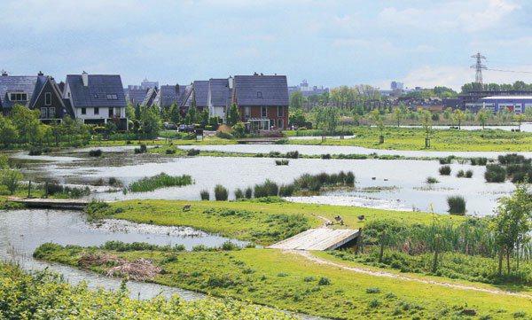 荷蘭蘭斯塔德地區,雖是政治、經濟發展重要地帶,但郊區仍保有田園景象。 記者陳正興...