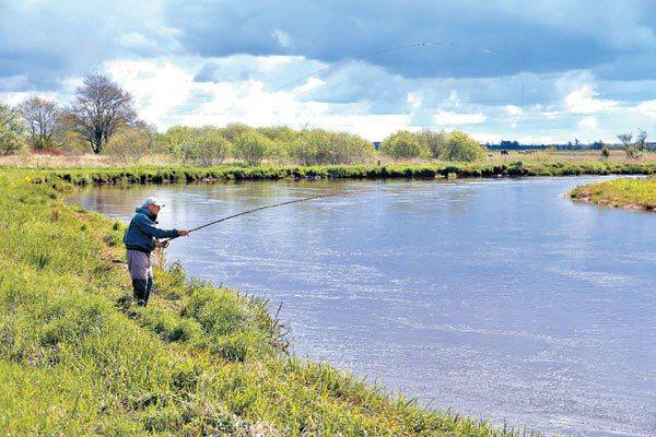斯凱恩河道復原完工,河邊出現釣客。 記者陳瑞源/攝影