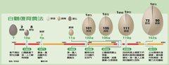 日本篇/無農藥減農藥復育農法 豐岡白鸛再現