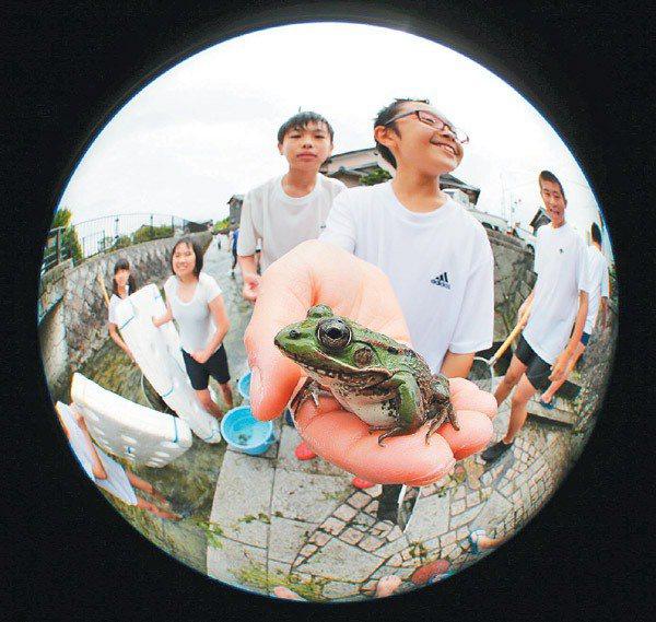 針江聚落成為日本最佳戶外教學地點。圖為日本青山中學學生田島寬太(右二)在針江大川...