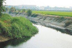 三大糧倉工業汙染 老農不敢吃自種米