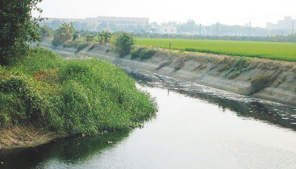 工業廢水與灌溉用水在同一溪流,農田遭汙染。 記者劉學聖/攝影