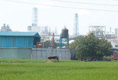 國土重評重畫 農地工廠應分離