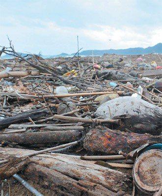 垃圾透過排水道、河流到海洋,漁船廢棄物倒入海中。許多海邊垃圾場無人監控。