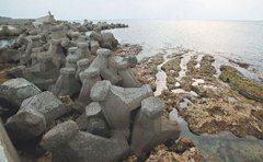 解決海岸侵蝕?塞滿石粽的沙灘
