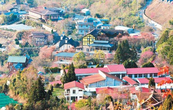 清境地區民宿林立,山坡上擠滿了各種造型的建築物。 記者邱德祥/攝影