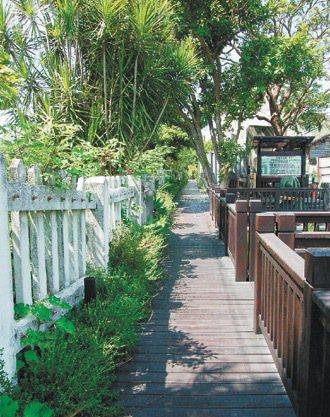 造橋火車站兩側通學步道,有綠美化。 記者張裕珍/攝影