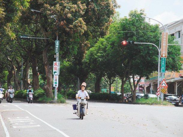 中正大學對外主要幹道大學路上,大學生和阿伯都闖紅燈。 記者謝恩得╱攝影