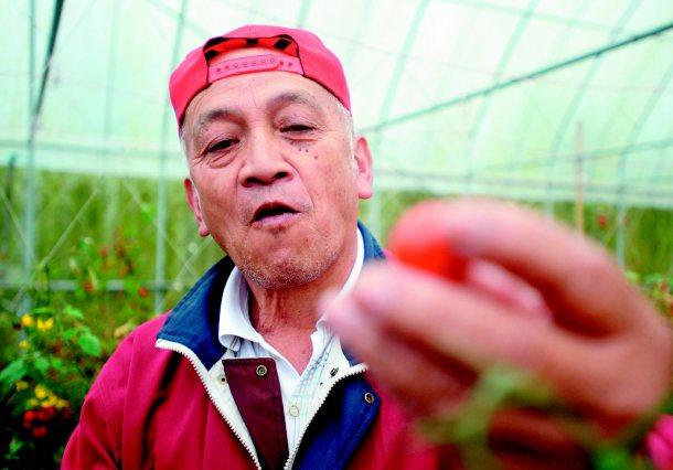 光原社企協助阿里山農民行銷有機蔬果。 記者陳易辰╱攝影