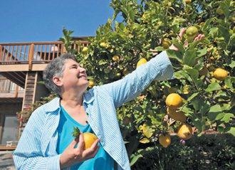 《單身,不是你想的那樣》的作者迪波洛認為,一個人的生活也很快樂,她常在院子裡找到...