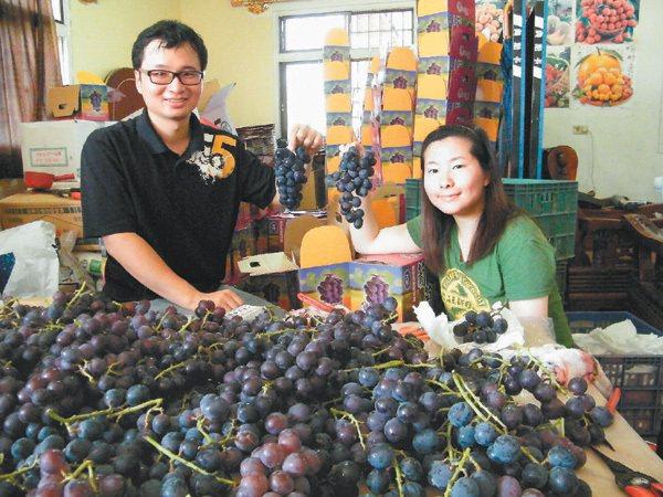 曾在竹科當工程師的陳正恩,回大村老家當葡萄農後,用好吃的巨峰葡萄打動美術老師...
