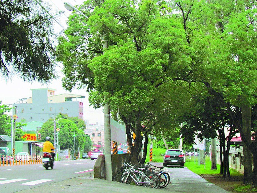 南崗國中校門口的大庄路,步道僅60公尺長,學生上下學要走在快車道上,縣府已決定興...