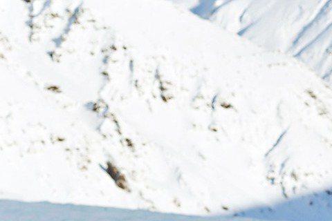 吳克群相隔3年發行專輯,新作品「數星星的人」走英式搖滾加人文風格,日前跑去冰島取景,在體感溫度零下10度的氣候下,吳克群未著裝備站在冰川上,讓人看得膽顫心驚,工作人員直呼他為求完美,把命都豁出去。吳...