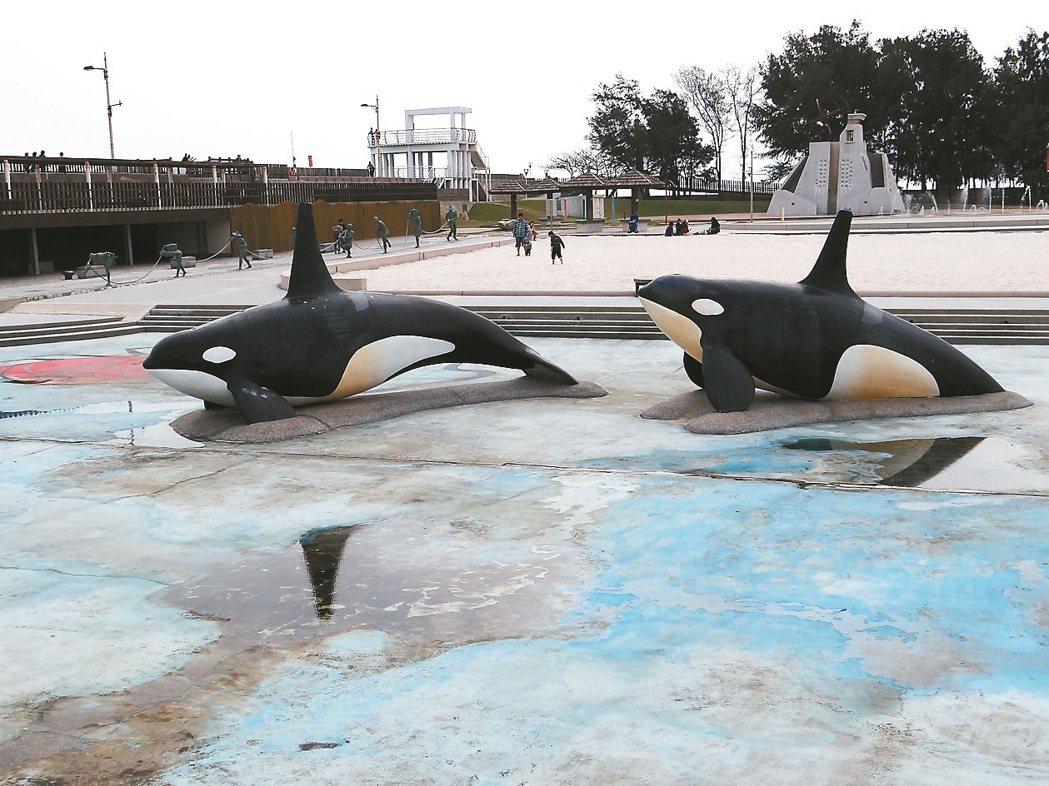 俗稱「鯨魚池」的親子戲水區,只有暑假才進水,並對外開放。