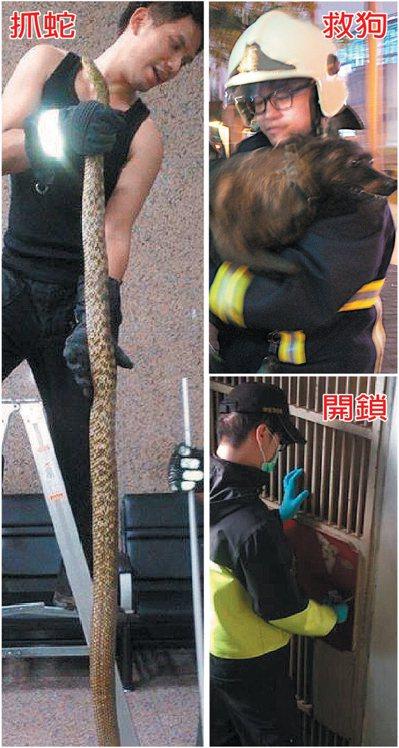 打火兄弟除了救火外,也常支援民眾五花八門的協助要求。 記者陳珮琦/攝影