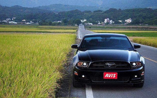 台灣東部是GT旅遊愛好者的首選。 蔡志宇