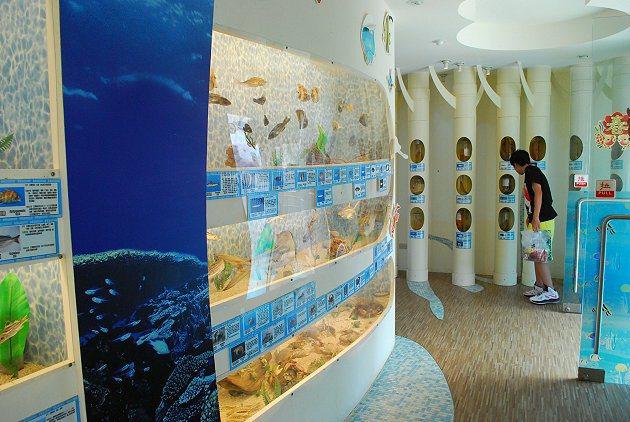 台江魚類標本生態館。 記者趙惠群/攝影