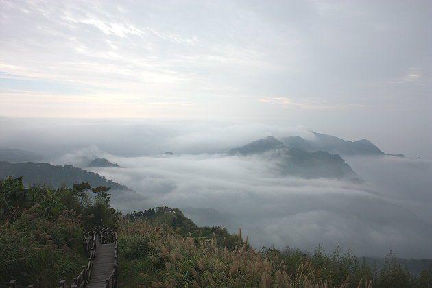阿里山半山腰的「二延平步道」視野、高度皆夠,得天獨厚的地理條件讓它有如仙境般的雲...