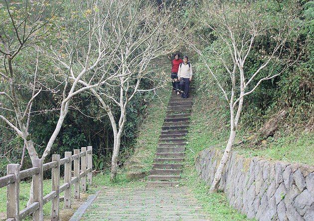 二延平山步道登山入口。 記者林和謙