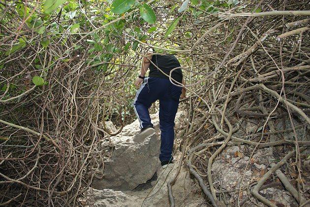 爬樹洞過程要注意安全,因為岩塊有點滑,須小心謹慎才不會跌倒。 記者林和謙/攝影