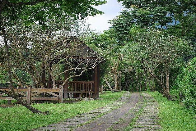 被熱帶闊葉林覆蓋的白鮑溪生態步道,沿途隨處可觀察到驚奇的動植物生態。 記者趙惠群...