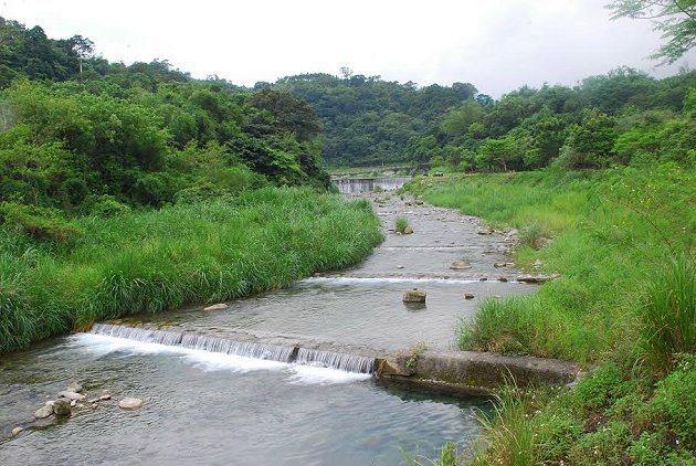 白鮑溪渓水平時和緩幽幽,河岸兩旁都是闊葉林木。 記者趙惠群/攝影