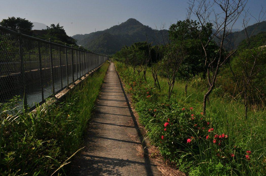 富螢步道每到夏初四、五月這裡就是螢火蟲紛飛的壯觀景象。 記者許信文/攝影