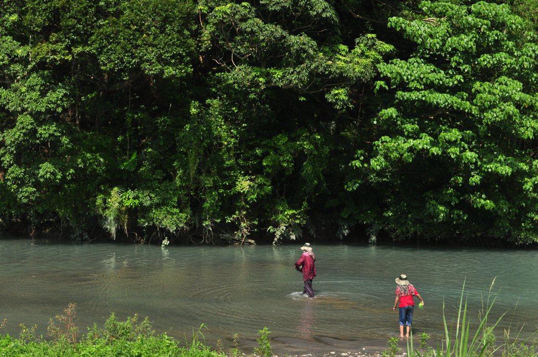 一旁的小支流上有家人在此戲水。 記者許信文/攝影