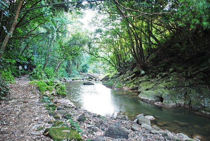 四寮溪有仙人煉丹一般的仙境。 記者趙惠群/攝影