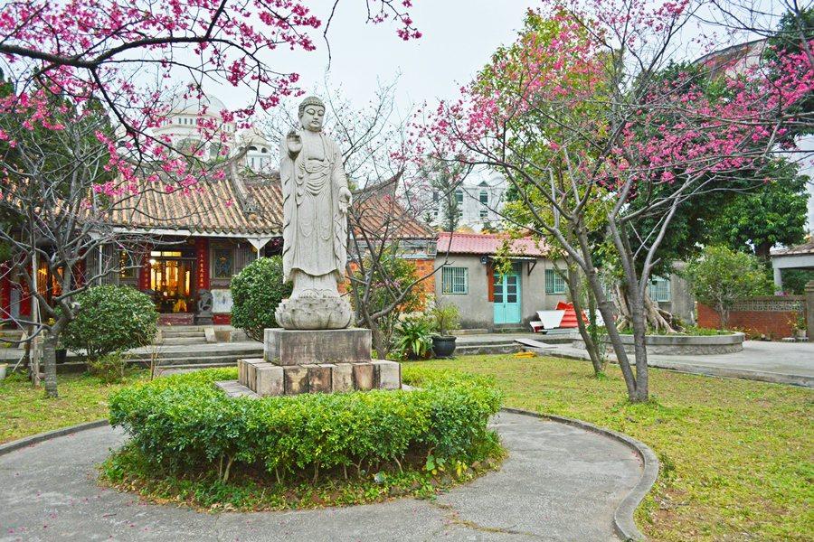 回善寺是楊梅另一個賞櫻景點,這間百年佛寺庭園種植目山櫻與八重櫻,庭園內還安奉一尊...