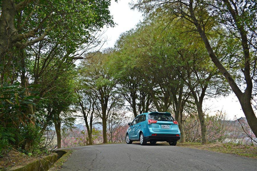 大平山路蜿蜒穿梭在密林中,美不勝收。 記者趙惠群/攝影