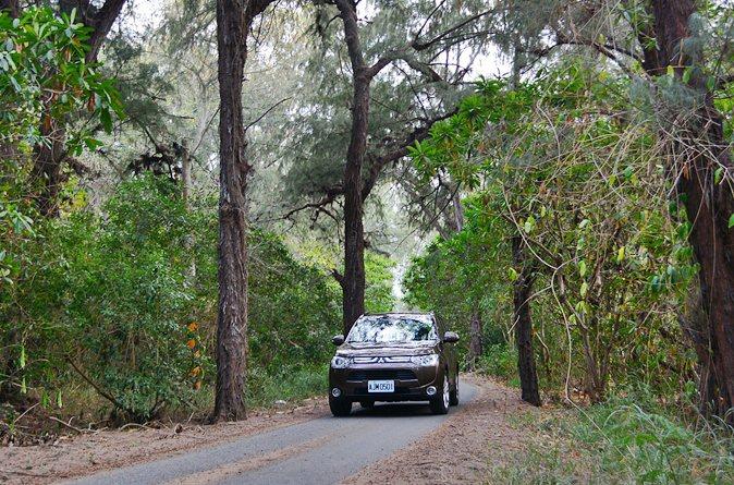 開著怠速寧靜的三菱Outlander休旅車,緩緩走在好美寮防風林間,只充滿探險的趣味,而我們彷如走在德國南部的黑森林。 記者趙惠群/攝影