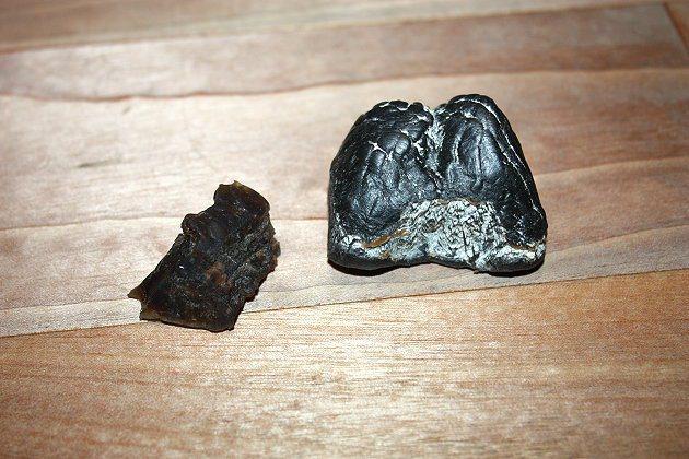 天然橡膠(左),右為合成橡膠。 記者林和謙/攝影