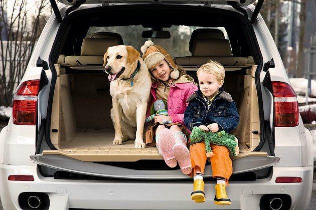 由BMW原廠認證中古車部門所收購的中古車,BMW團隊都將嚴格檢驗外觀、內裝、底盤...