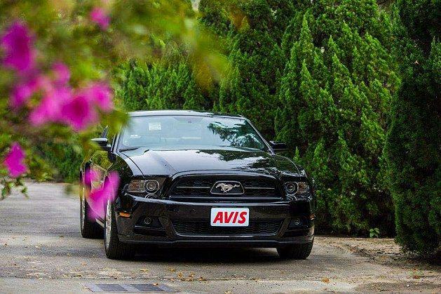 Mustang野馬跑車。 AVIS Taiwan
